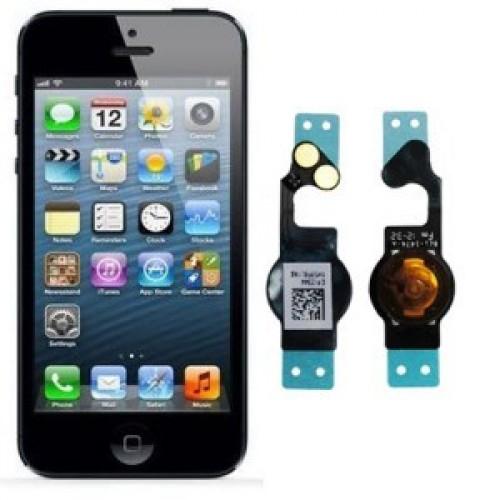 Reparar Botón Home iPhone 5 - Servicio Técnico iPhone 5 iPhone 5 - Reparaciones