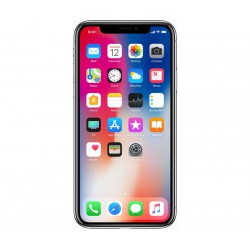 iPhone X Desmontado